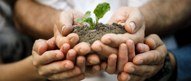 seguro-responsabilidad-medioambiental-foto